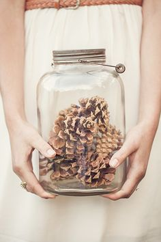 If there is anything I have a ton of - jars and pinecones! Love the simplicity…
