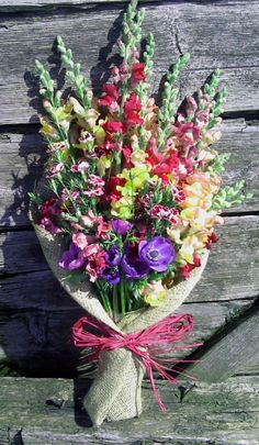 A late spring bunch of flowers - snapdragons, anemones, dianthus, all grown here in Brecon Bunch Of Flowers, Fresh Flowers, Flower Designs, Flower Ideas, Funeral Tributes, Sympathy Flowers, Funeral Flowers, Botanical Gardens, Gardening Tips