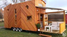 Tiny house en Promotion