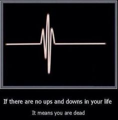 No ups and downs...quote