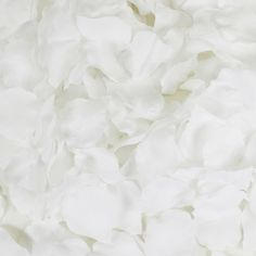 White Silk Rose Petals, : Wholesale Wedding Supplies, Discount Wedding Favors, Party Favors, and Bulk Event Supplies Real Rose Petals, Silk Rose Petals, Flower Petals, Rose Petal Aisle, Rose Petal Confetti, Faux Flowers, Colorful Flowers, Wedding Favors, Wedding Decorations