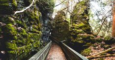 This Trail Takes You To Cliffs, Caves And An Old Canyon In Ontario featured image hiking gear for beginners, hiking for women, alabama hiking Hiking Spots, Hiking Trails, Amazing Destinations, Vacation Destinations, Vacations, Vacation Ideas, Ottawa, Cedar Forest, Ontario Parks