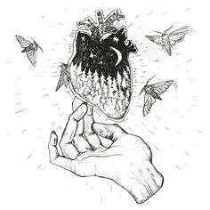 Hand moth illustration on Behance by Karina Yashagina