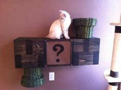 Super Mario Cat Playground.  Could be a cool decoration too...