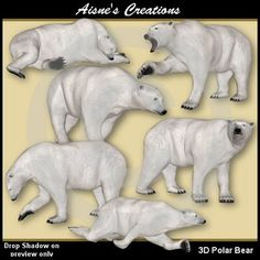 This pack contains 6 3D Polar Bear graphics and 6 matching sketch drawings.