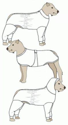 Estos patrones sirven tanto para perro como para gatos,ayudándose de las medidas, la morfología y anatomia de ambos animales : gato y perro ...