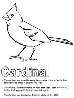 Bird Cardinal Coloring Pages