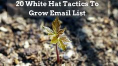 20 White Hat Tactics to Grow Email List