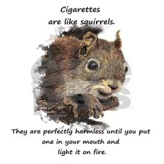 Funny Quit Smoking Squirrel Quote Cube Ottoman