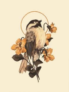 Brittle & Bright giclée print — Teagan White - Informations About Brittle & Bright giclée print — Teagan White Pin You can easily use my profil - Art Inspo, Inspiration Art, Animal Drawings, Art Drawings, Art Et Illustration, Art Design, Bird Art, Oeuvre D'art, Art Reference