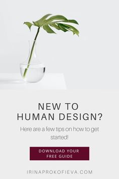 Do you want to learn how to start applying Human Design to your life and business? Click here to discover the best tips to integrate into your business right now. Human Design for entrepreneurs, online coaches, and service providers. Human Design type, strategy, authority and profile. | Human Design Coach | www.irinaprokofieva.com Excited About Life, How To Apply, How To Get, Self Empowerment, Design Strategy, Generators, Projectors, Online Coaching, It's Meant To Be