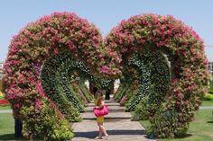 Luxury Travel in Dubai Slideshow & Video | TripAdvisor  - Hearts of Flowers!