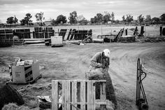 Unable to hire help, 71 year old, Mr. McGill, does all the work on the farm, from feeding and bathing to spreading the pigs' bedding, with only occasional help from family members. Stolen Land, Stolen Future by Photographer Michael Santiago
