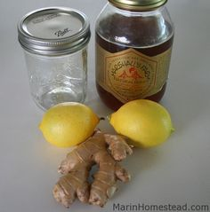 Lemon Ginger and Honey in a Jar (Cold Buster!)   Marin Homestead