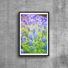 Texas Bluebonnets Photograph Print Flower Photography Nature Photo Blue Green Floral Wall Art Decor by SusanGottbergPhotos on Etsy