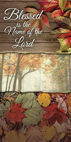 Church Banner - Fall & Thanksgiving - Blessed Is the Name Thanksgiving Blessings, Thanksgiving Quotes, Thanksgiving Decorations, Thanksgiving Iphone Wallpaper, Church Banners, Bible Quotes, Mornings, Harvest