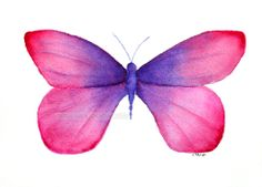 Pink And Purple Butterfly | pink with purple butterfly painting archival print by carolsapp