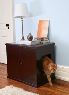 incognito litter box, for the sophisticated kitty, made one for Godot and the kid's one bedroom apartment