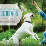 Essential Oils and Pets: A Quick How-To | For more information and to order Young Living, visit:  www.TheSavvyOiler.com