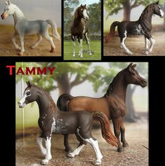 Not schleich, but a smaller look-alike (original above left) of the arabian stallion (below right for comparison), repainted