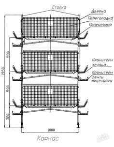 Клетка для перепелов своими руками: особенности изготовления. Изготовление домика для перепелов