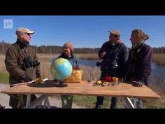 Ulos luontoon - Kevätseuranta (2/5) Kutua ja käärmeitä 2014 - YouTube