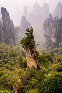 #Zhangjiajie National Forest Park, #China Travel, world, places, pictures, photos, natures, vacations, adventure, sea, city, town, country, animals, beaty, mountin, beach, amazing, exotic places, best images, unique photos, escapes, see the world, inspiring, must seeplaces.