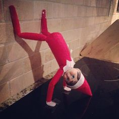 Pin for Later: 45 Photos Proving the Elf on the Shelf Isn't Afraid to Sweat a Little Tell the kids that handstand push-ups get the Elf in tip-top shape, but you know he's twerking. Christmas Elf, Christmas Colors, Christmas Crafts, Christmas Ideas, Christmas 2017, Christmas Recipes, Holiday Stress, Holiday Fun, Holiday Decor
