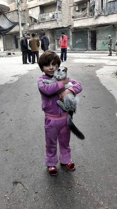 A ray of hope in a land of bombings & sadness.  From Aleppo - a girl and her cat #Syria #cats