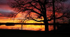 Image result for sunset silhouettes