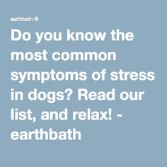 Do you know the most common symptoms of stress in dogs? Read our list, and relax! - earthbath ®
