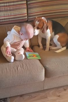 When You See What's Going On Between This Dog And Baby Here, Your Heart Will Explode (VIDEO) #dog #puppy #baby #pets #animals #heart #love #cuteness