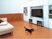 ペットも快適に暮らせる住宅建材 [内装建材] All About Interior Design, Furniture, Home Decor, Nest Design, Decoration Home, Home Interior Design, Room Decor, Interior Designing, Home Furnishings