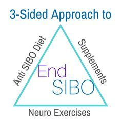 SIBO (Small Intestinal Bacterial Overgrowth) is a complex condition that requires a three-sided approach in order to support and rebalance your body, giving it what it needs to heal itself: a speci…