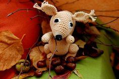 Veverička Anička
