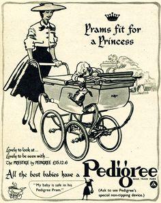 Damn straight..I've got a Pedigree Pram