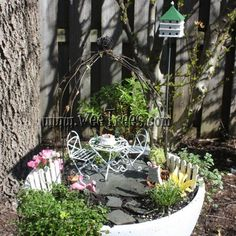 Great new miniature garden created by Sherry!