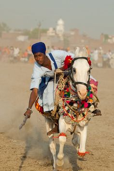 Marwari horse & rider, India, tent pegging