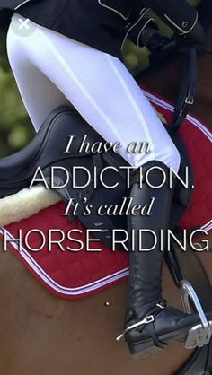 Western is more my thing, but any riding is better than no riding. ❤ Western is more my thing, but any riding is better than no riding. ❤ - Art Of Equitation Equine Quotes, Equestrian Quotes, Equestrian Problems, Westerns, Inspirational Horse Quotes, Horse Riding Quotes, Funny Horses, Horse World, Horse Photos