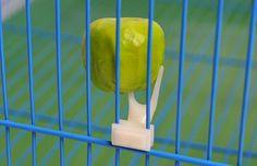 Hot Sale pet parrot Fruit fork birds set on the cage convenient feeder supplies device 2 PCs /LOT a15