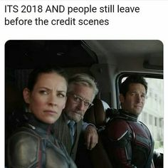 Like, c'mon people. Don't just be Marvel fans, be Marvel STANS.>>>>>> Paul Rudd… Like, c'mon people. Don't just be Marvel fans, be Marvel STANS.>>>>>> Paul Rudd… appeared first on Marvel Universe. Avengers Humor, Marvel Jokes, Marvel Avengers, Marvel Funny, Marvel Dc Comics, Captain Marvel, Captain America, Avengers Cast, Avengers Quotes