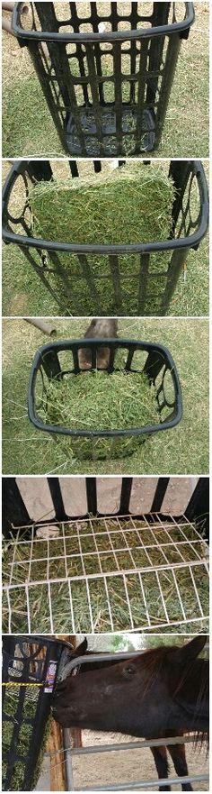 Diy slow feeder / grazer for horses.