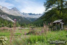 Le Laus - Hautes-Alpes   par thomaslombard.com