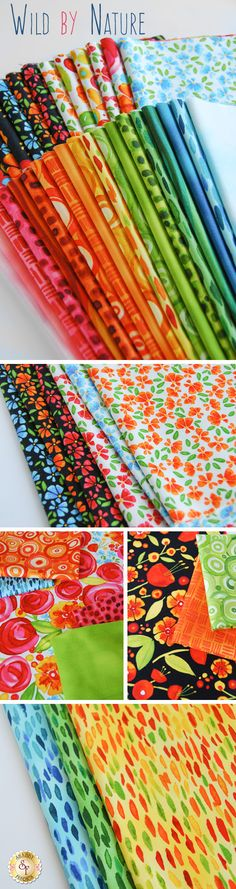 Wild By Nature by Kathy Deggendorfer for Maywood Studio Fabrics is a fresh and colorful fabric collection available at Shabby Fabrics!