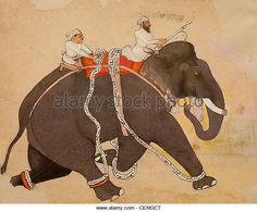 Royal Mughal elephant at a gallop - the Ashmolean Museum, Oxford - Stock Image