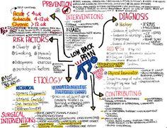 Ob Nursing, Nursing Notes, Medical Students, Nursing Students, Ideal Body, Medical Field, Student Studying, Nclex, Superpower