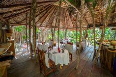 Azulik Cenote Bar Banner Jpg