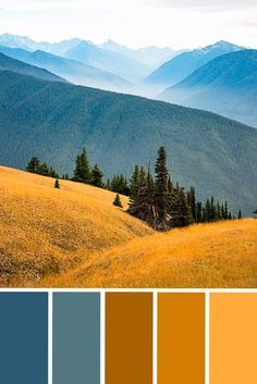 A stunning color design & color palette inspiration of a blue and gold mountain art print. Gorgeous as any interior or living room color scheme inspo. This gorgeous photo from Olympic National Park is… Interior Color Schemes, Living Room Color Schemes, Colour Schemes, Interior Design, Blue Colour Palette, Color Palate, Room Colors, House Colors, Colours