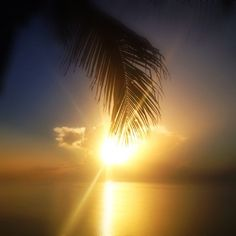 Here comes the sun. It's all right...
