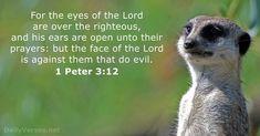 62 Bible Verses about Prayer - KJV - DailyVerses.net Bible Verses About Prayer, Scripture Verses, Jesus Is Lord, Jesus Christ, God, 1 Peter 3, Pray Continually, Rejoice Always, Verse Of The Day